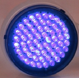 Blue Light Therapy Fights Acne
