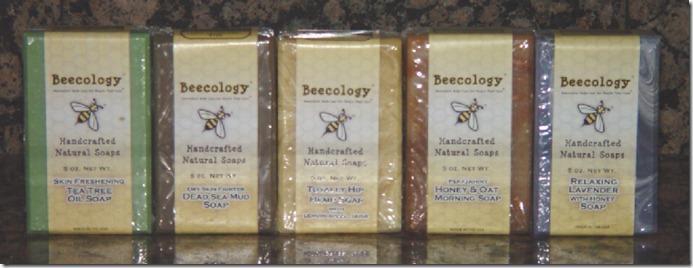 Beecology