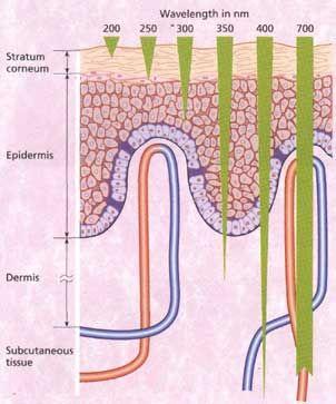 Wavelengths penetrating deep into the skin